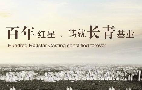 红星发展 企业网站建设